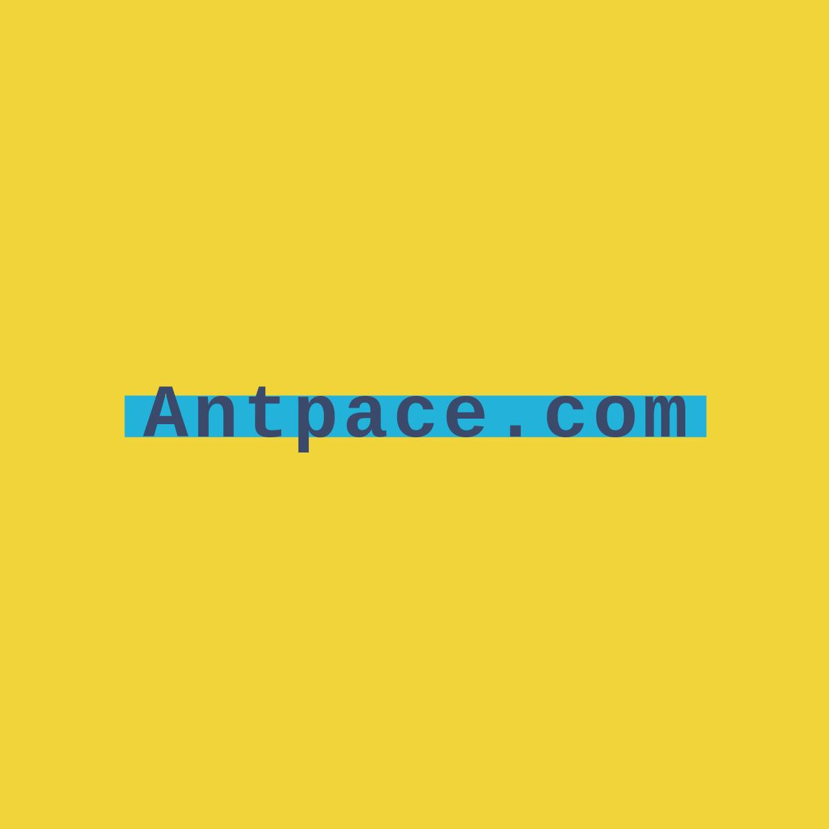antpace.com